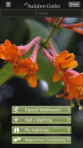 Audubon Wildflower app