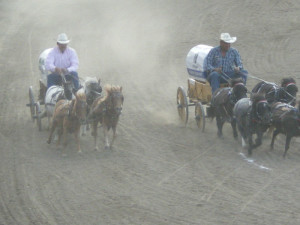 Backcountry Chuckwagon Race