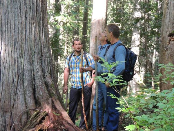 Hiking Trails - Monashee's
