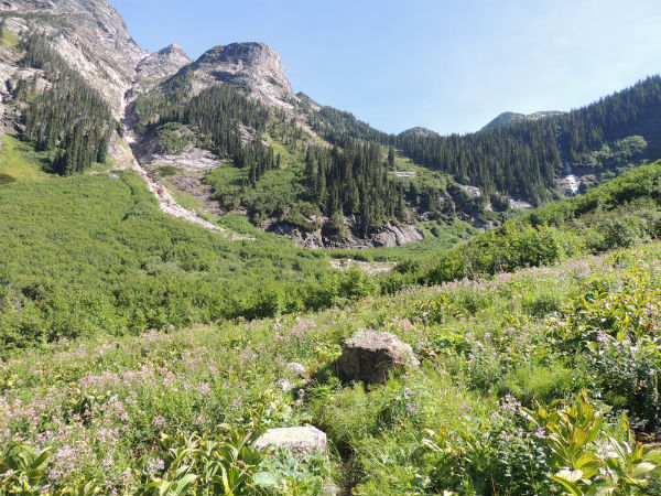 Hiking Trails in the Monashee's