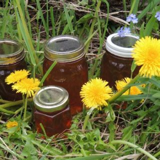 jelly making jam recipe