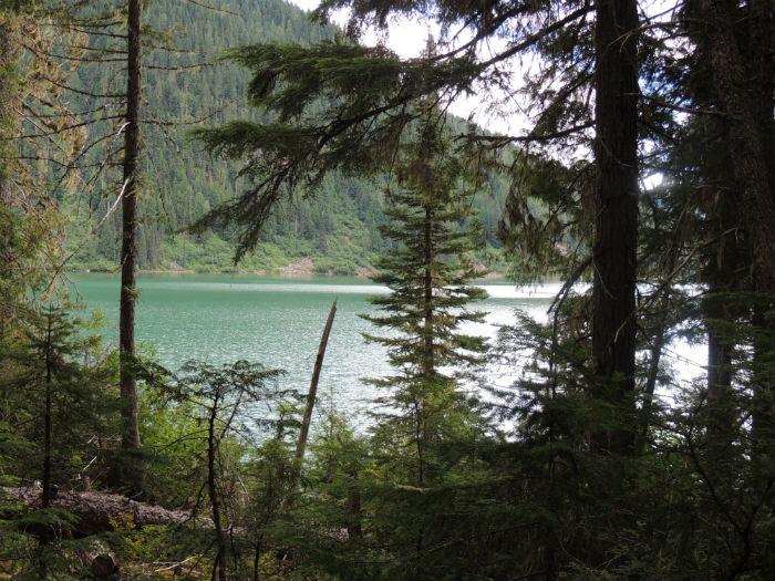 Green Bush Lake BC