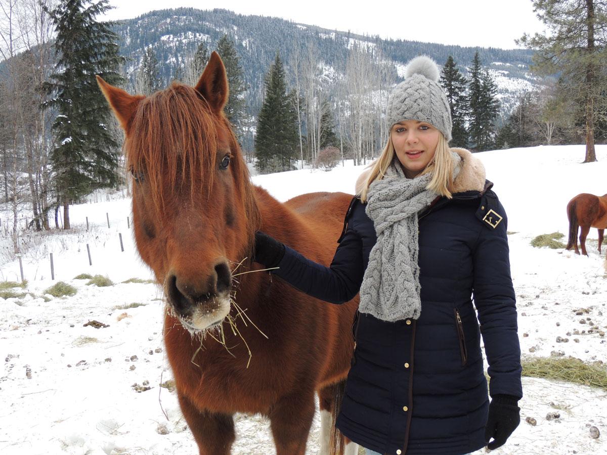 Dolly My Horse
