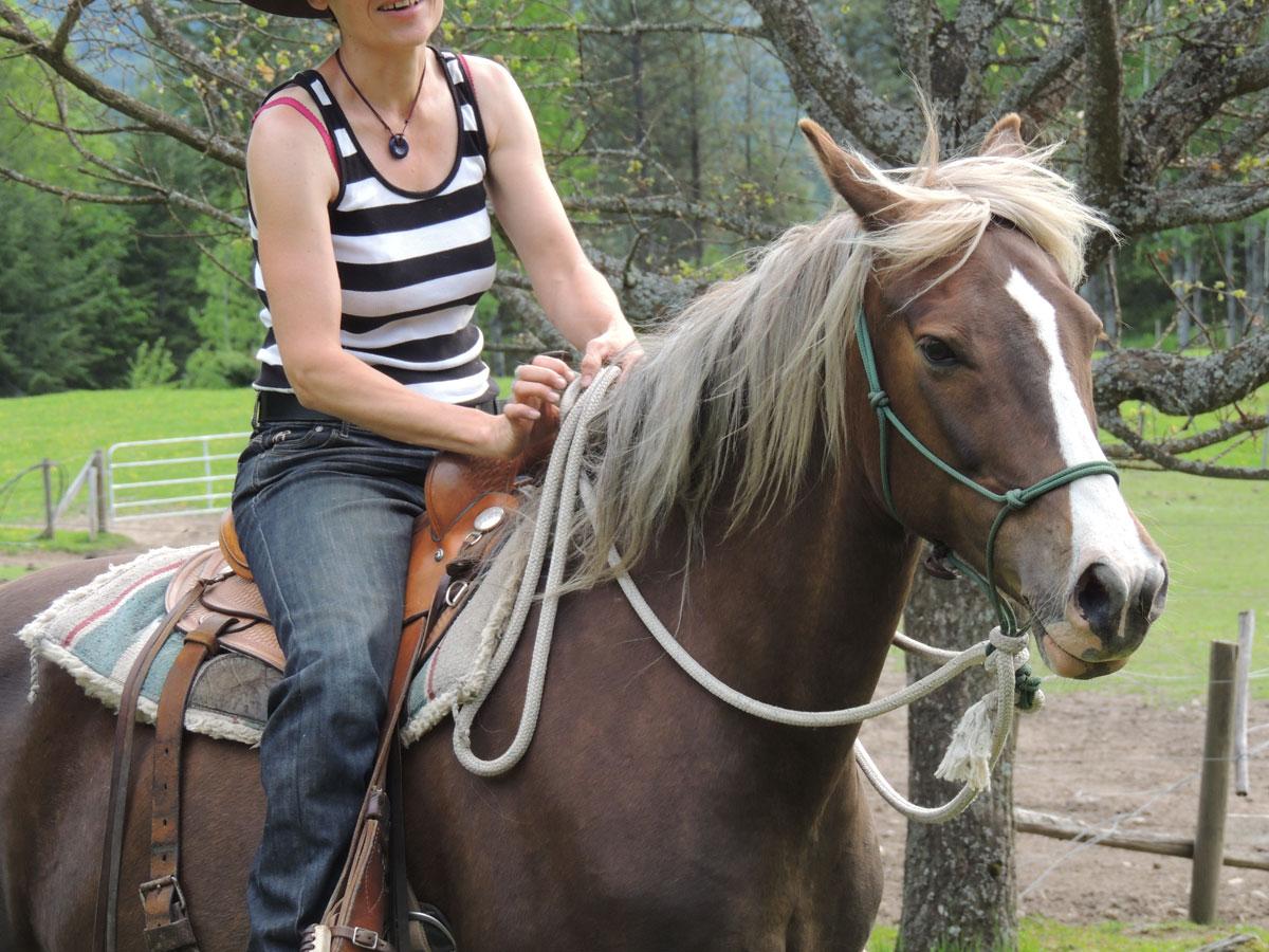 Miracle Horses Destiny