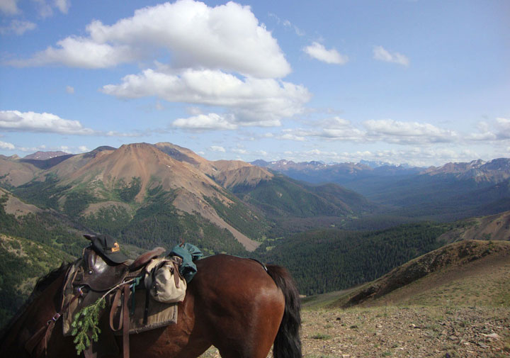 Horse pack trips - view